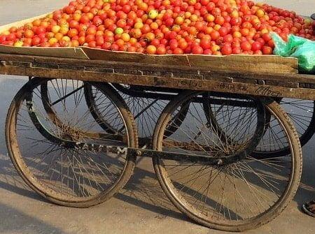 Small Street Vendors Tomato