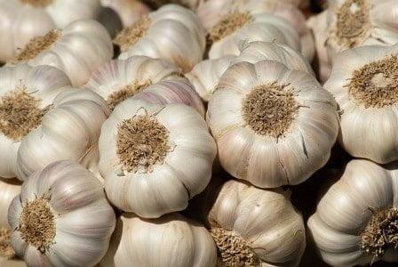 Garlic Boost immune system immunity improving foods