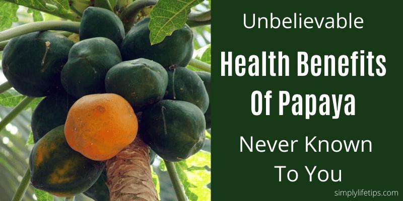 Health Benefits Of Papaya ImmunityBooster