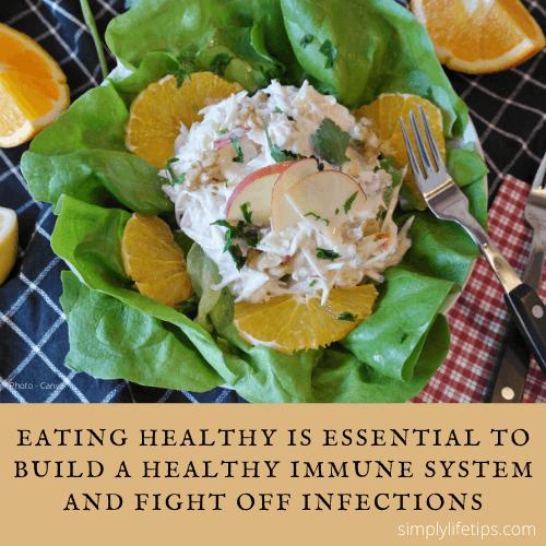 Healthy Eating Healthy Immune System Habits Damage Immunity