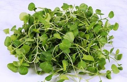 Watercress anti aging foods