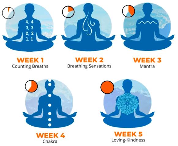 Meditation techniques for better mental health